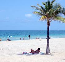 Cosas de la diversión en Fort Lauderdale