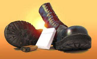 Acerca del zapato Historia Shine