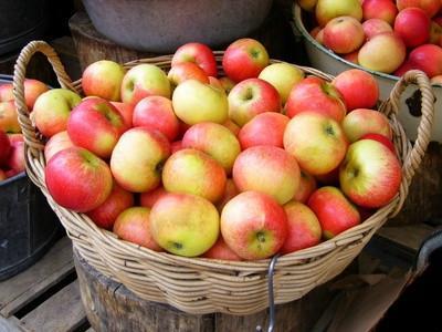 Forma de guardar correctamente las manzanas