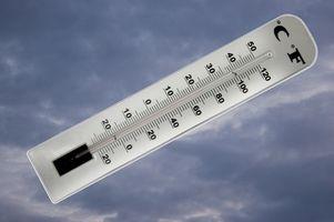 Cómo leer un acuario del palillo en un medidor de temperatura