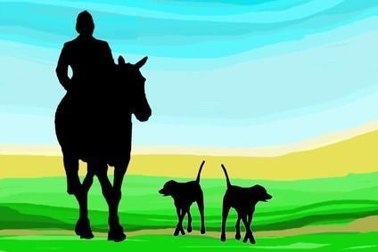 Tours de caballos en Irlanda