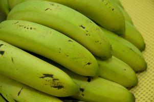 Cómo Deshidratar Raw Pan de plátano