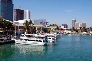 Cinco Estrella Restaurantes en Miami, Florida