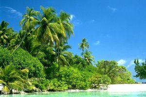 Viajar a Micronesia