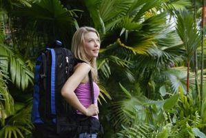 ¿Qué dos tipos de regiones tropicales del clima?
