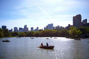 Arbor Day Actividades en White Plains, Nueva York