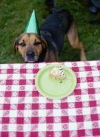 Cómo hacer un pastel en forma como un perro