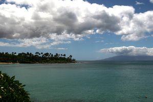 Café-Plantation Tours en Maui