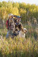 Los signos de madurez en Labradores