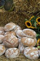 Cómo iniciar un pan de masa fermentada de arranque