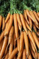 Cómo cocinar las zanahorias como papas fritas