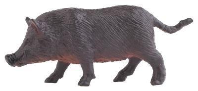 Los alimentos subterráneos para los cerdos salvajes