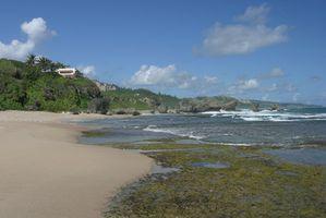 Hoteles románticos en Barbados