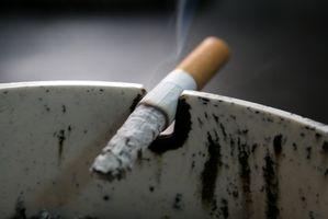 Hoteles en Salt Lake City con habitaciones para fumadores