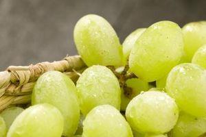 Cómo podar Thompson uvas sin semillas