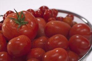 Diferencia entre guisadas los tomates y el tomate triturado