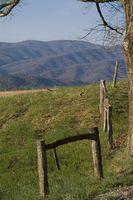 Cabañas en o cerca de Pigeon Forge, Tennessee