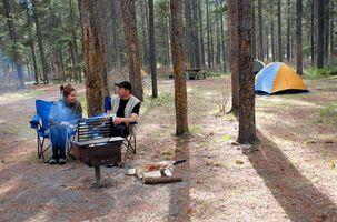Campamentos cerca de Midland, Michigan