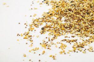 Cómo cocer al horno de semillas de aves