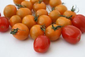 Cómo congelar tomates frescos y salsa de tomate