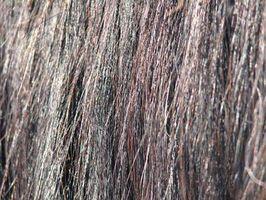 ¿Cómo hacer nudos del pelo inusuales