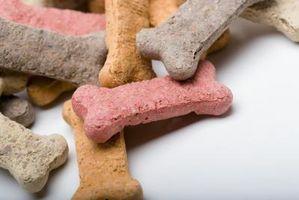 El inventor de la galleta para perros
