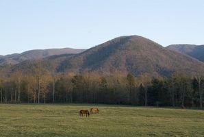 Cabañas cerca de Gatlinburg en Carolina del Norte