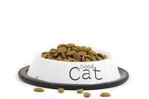 Lista de alimentos malo para gatos