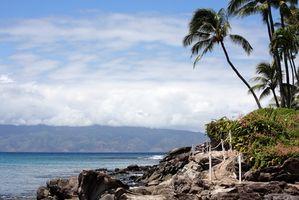 La información sobre volver a poner a Hawaii