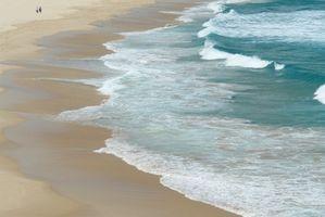 Hoteles frente al mar en Daytona Beach Shores