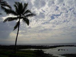 Todo el día excursiones en bote en Kona, Hawaii