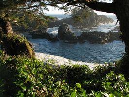 Lugares para ir de vacaciones que están en la playa en la isla de Vancouver, BC, Canadá