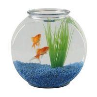 ¿Cuál es la diferencia entre un filtro y un filtro de sumidero seco mojado por los tanques de peces?