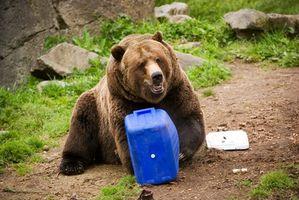 Cómo empacar un refrigerador de hielo Sin