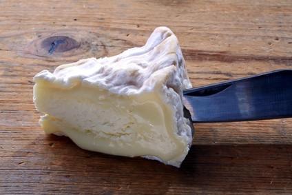 Diferentes tipos de quesos blancos