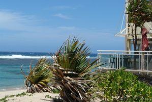 Hoteles baratos frente al mar en Florida