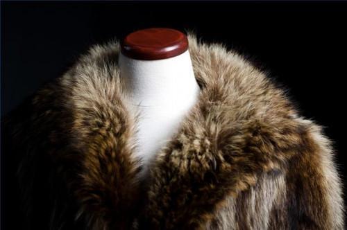 Cómo eliminar el olor De un abrigo de pieles