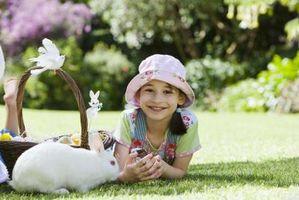 Fruta y verdura que son seguros para Conejos