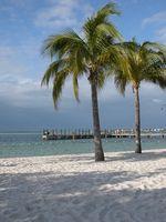 Boca Raton, Florida hoteles frente al mar