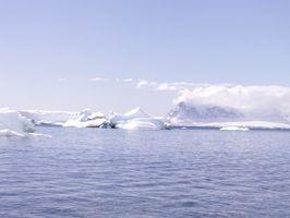 Ecoturismo en la Antártida