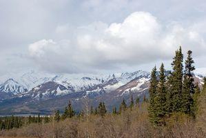 Vacaciones Tren de Alaska