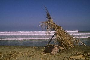 Las playas de conchas marinas en México
