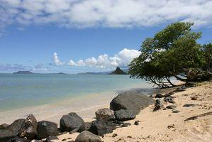 Hoteles en Kaneohe, Hawai