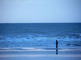 Hoteles Tres estrellas en Ocean Shores, Washington