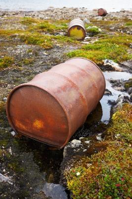 Las actividades en la tundra Bioma