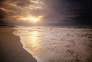 Hoteles en Key Beach Cerca de Perdido, la Florida
