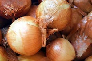 Cómo reducir la resistencia de una cebolla