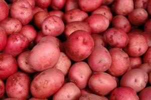 Cómo congelar las patatas rojas