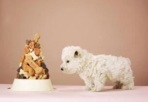 Cómo cocer al horno las magdalenas para perros