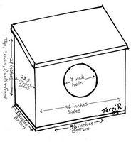 Cómo construir una caja nido de guacamayos